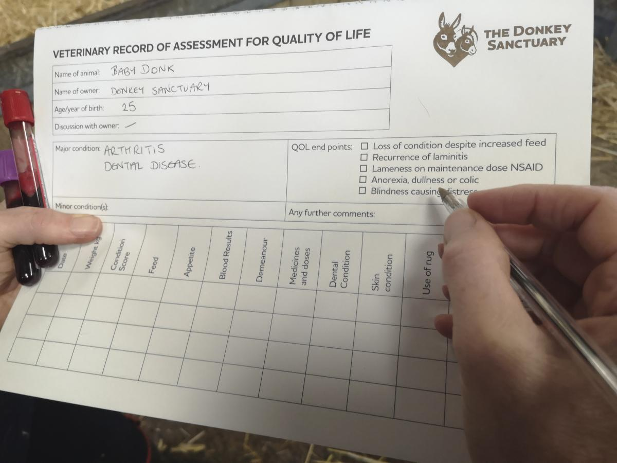 Quality of life assessment sheet.