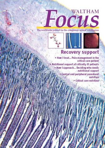 Recovery Support - Veterinary Focus - Vol. 16(3) - Oct. 2006