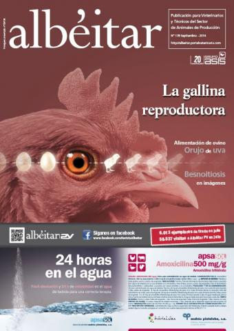 La gallina reproductora - Albéitar - N°178, Sep. 2014