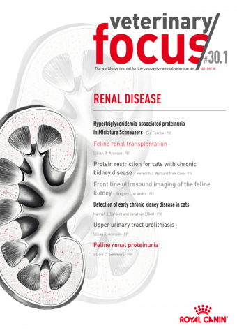 Veterinary Focus Issue 30(1) June 2020