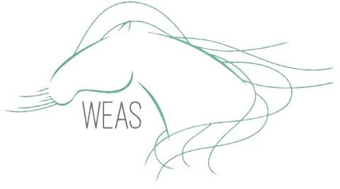 WEAS - World Equine Airway Symposium