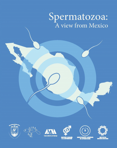 Spermatozoa: A view from Mexico