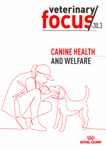 Veterinary Focus 30(3)