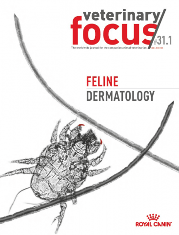 Veterinary Focus- 31(1) - Feline Dermatology