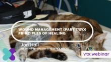 Wound-Management-Part-2 vtx cpd
