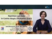 VETtube Nutrition can help in canine Atopic Dermatitis