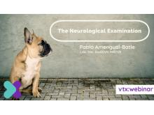 The Neurological Exam VTX