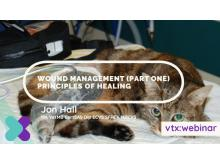 Wound-Management-Part-1 vtx cpd