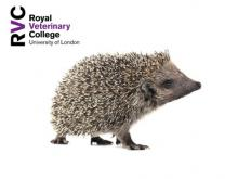 RVC - Approach to wildlife casualties in general practice