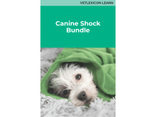 Canine Shock Bundle