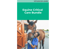 Equine Critical Care Bundle