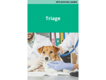 Triage (Canine)
