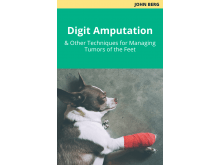 Digit amputation (and other techniques for managing tumors of the feet)